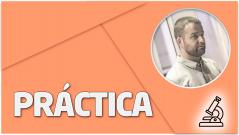 PRÁCTICA Multistack 3bet pot OOP – Flop Cbet opportunity