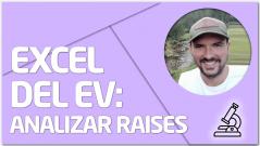 PRÁCTICA Excel del EV IV: Analizar raises