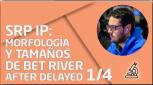 PRÁCTICA SRP IP: Morfología y tamaños de bet river after delayed 1/4