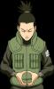 Profile picture for user jonbu